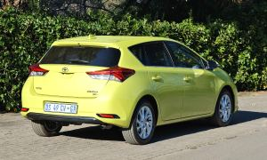 Auris-Xr-Vergelegen-082-butt
